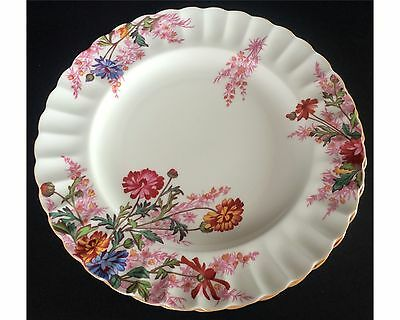 Set Of 2 Spode Chelsea Garden 9 & 1/4 Inch Luncheon Plates R9781