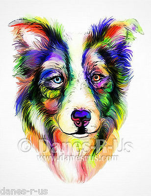 Border Collie Bright Dog Art Greeting Note Cards Set of 10