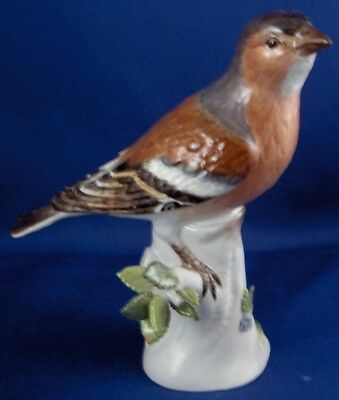 Nice Meissen Porcelain Bird Figurine Figure Porzellan Vogel Figur German Germany