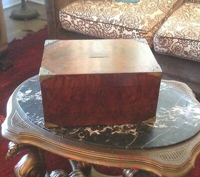 Antique Victorian Humidor Burled Walnut Chest With Brass Accents Cigar Scottish