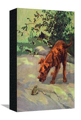Irish Terrier Puppy Stretched Canvas Print  By Diana Thorne