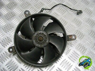 Look Honda Cbr900 Cbr 900 Fireblade 929 Rr1 2001 Radiator Rad Fan *free Uk Post*