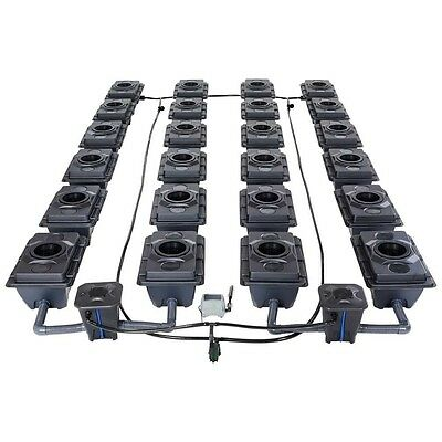 Iws Rush R-Dwc Hydroponics Systems 2 Lane Systems 82 Plant Centres 60L Chamber