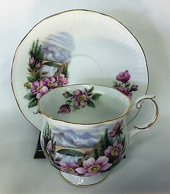 Rosina Queens China Teacup And Saucer Alberta Floral Scene#1