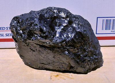 Anthracite Coal Freshly Mined Glossy Northeast Pennsylvania #16