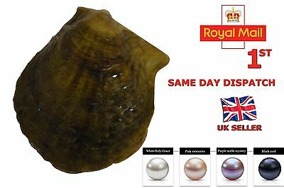 Round Akoya Pearl Oyster ***AAA QUALITY*** White**Pink**Purple**Black 7-8mm