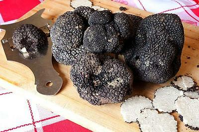 Remember,the true black and white truffle is born only in Italy. other potatoes.