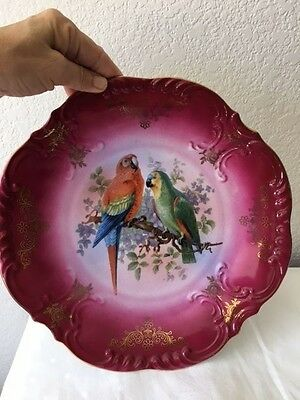 "CICO Antique Germany Bavaria 11"" Transfer Plate w/ Parrots Pink & Gold Accents"