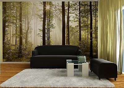 GIANT Wall Mural Photo Wallpaper MORNING FOG FOREST TREES Room Decor 360x254cm