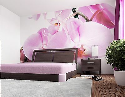 GIANT Wall Mural Photo Wallpaper VIOLET ORCHID FLOWER Home Decor Art 360x254cm