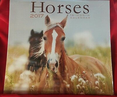 Horses 2017 16-Month Color Calendar