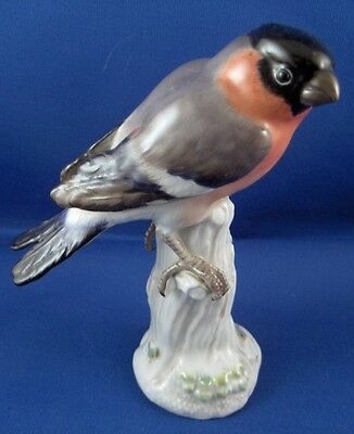 Meissen Porcelain Bullfinch Bird Figurine Figure Porzellan Vogel Figur German