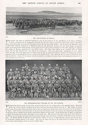 1900 ANTIQUE PRINT-BOER WAR- NCOs  OF 17th LANCERS (DUKE OF CAMBRIDGE'S OWN)
