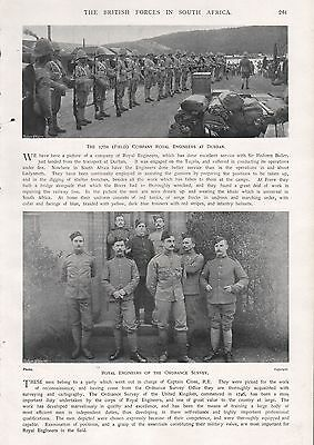 1900 Antique Print-Boer War- Royal Engineers Of The Ordnance Survey