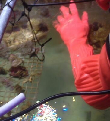 Tropical Aquarium Pond Maintenance Extra Long Rubber Gloves Waterproof Full Arm