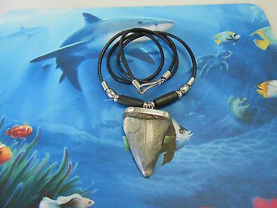 "1 3/4"" fossil Megalodon era Mako shark tooth necklace, beachwear, sharks teeth"
