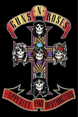 GUNS N' ROSES ~ APPETITE FOR DESTRUCTION POSTER 24x36 Music And Slash Axl Rose