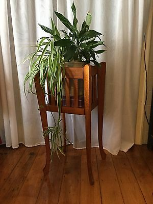Silky Oak Planter. Excellent Condition. Eighty Three CMS Tall