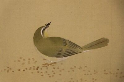 "JAPANESE HANGING SCROLL ART Painting ""Nightingale"" Asian antique  #E4953"