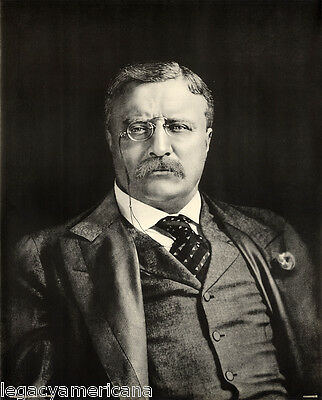 Authentic 1912 Theodore Roosevelt Campaign Poster (3582)