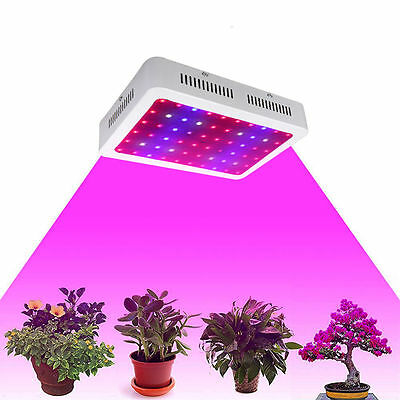 600/1000/1200W LED Grow Light Kit Full Spectrum Veg Bloom Indoor Plant Lamp