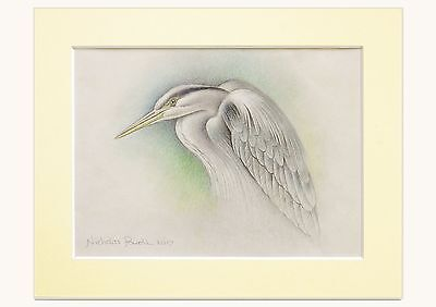 Original Signed Pencil Drawing Of Heron Signed By The Artist Nicholas Powell