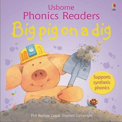 Big Pig on a Dig by Phil Roxbee Cox (Paperback, 2006)-9780746077184-G024