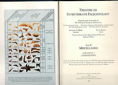 Treatise on Invertebrate Paleontology. ed by Richard A. Robinson Pt W Sup. 2