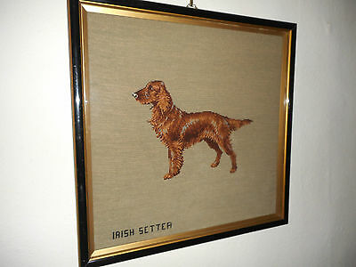 Rare Antique 19Th Century Very Large Framed Irish Setter Dog Woolwork Sampler