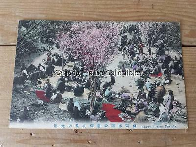 Hand-Colored Antique Cherry Blossom Fukuoka Japan Postcard