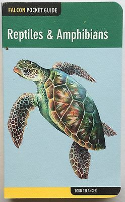 A WONDERFUL GUIDE to SNAKES/FROGS/TURTLES/LIZARDS/TOADS/GECKOS and MORE!  L@@K!