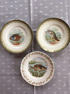 Antique Fish Plate -  Lot of Three Different 8 Inch Plates