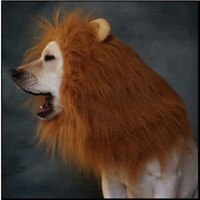 a09ca86645b LARGE PET DOG Lion Mane Wig Hair Halloween Costume Fancy Dress ...