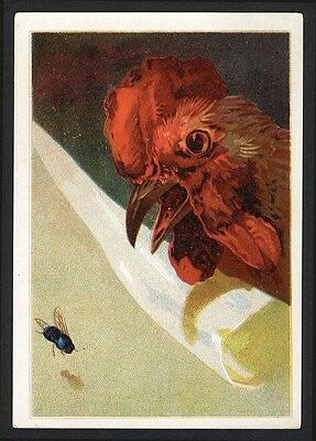 CHICKEN Rooster and a FLY Victorian Greeting Card 1880's Red Barnyard Bird