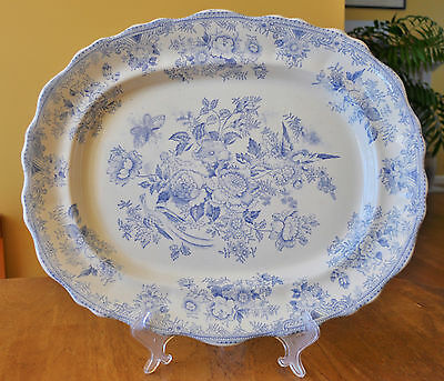Lovely Antique Staffordshire Blue & White Platter Asiatic Pheasants Bovey Tracey