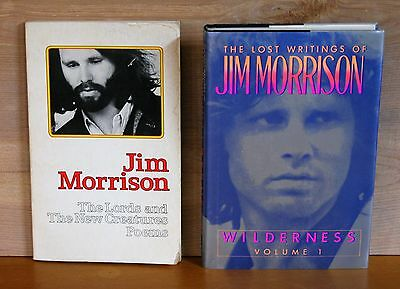 Lot  2 JIM MORRISON books LORDS AND NEW CREATURES POEMS first edition WILDERNESS