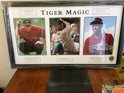 Tiger Woods Print Framed and Glazed Limited Edition