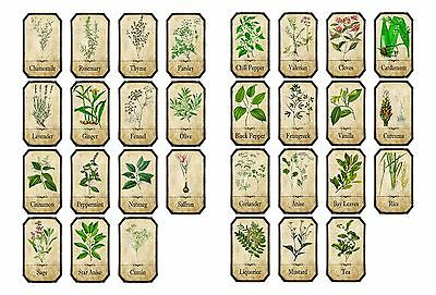 Set of Vintage Style Apothecary Spice Herb Labels sticky backed vinyl, waterpr