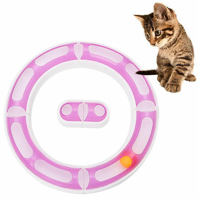 Fun Cat Pet Baby Track Orbit Ball Plastic Toys Senses Play Chase Game