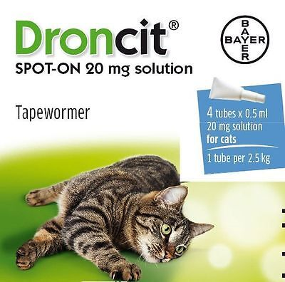 DRONCIT SPOT ON NASTRO WORMER per gatti (4 confezioni) - Applicare to the pelle