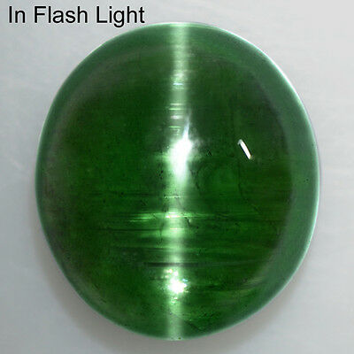 10.06 Cts Natural Lustrous Green Tourmaline Cats Eye Oval Cabochon Brazil Video
