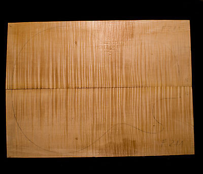 Riegelahorn / Flame Maple Guitar Top - Bookmatched - 490/350/16mm (#F211) AAAAA