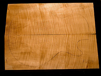 Riegelahorn / Flame Maple Top - Bookmatched - 500/370/15mm (#F209) AAAAA