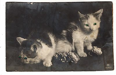 early 1900 LITTLE CATS with 3D EYES ANTIQUE POSTCARD EUROPEAN