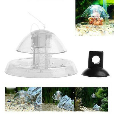 Clear Snail Trap Aquarium Fish Tank Plants Planarian Leech Catch Environment