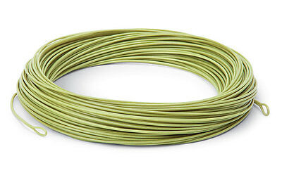 Platinum WF-8F Platinum floating fly line, with welded loops both ends. Trout.