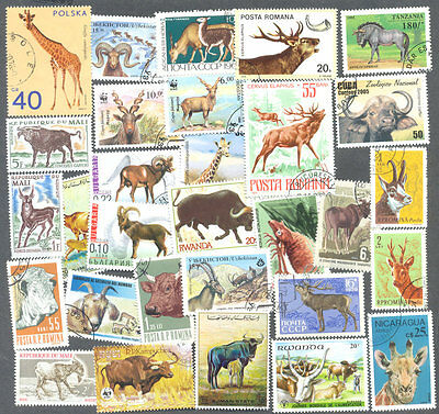 Horned Animals-100 all different collection-Deer-Cattle-etc