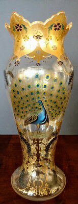 Old MOSER Glass Tall wide, clear, Peacock on 2 sides, gold gilt, enameled Rare!