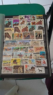 44 timbres Chevaux (lot1)