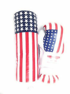 16 oz USA FLAG COLOR BOXING GLOVES & PUNCHING BAG TRAINING SET for Youth
